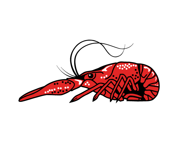 Deanie's History